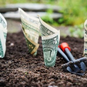 What is Daily Money Management